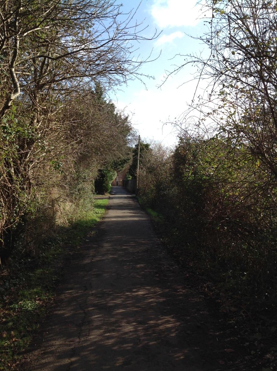 walk 5